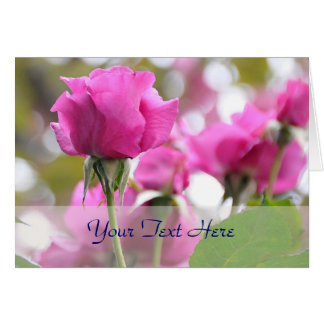 Shocking Pink Rose Beauty Card