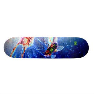Shoe Fly Skateboard