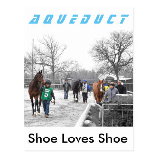 Shoe Loves Shoe Postcard