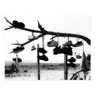 Shoe Store Postcard