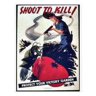 Shoot To Kill! Custom Flyer