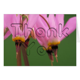 Shooting Star Flower Floral Thank You Card
