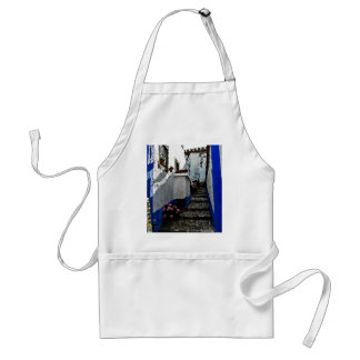 Shop and Steps in Obidos Portugal Adult Apron