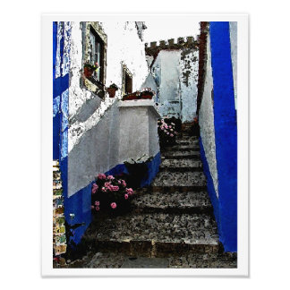 Shop and Steps in Obidos Portugal Photo Print