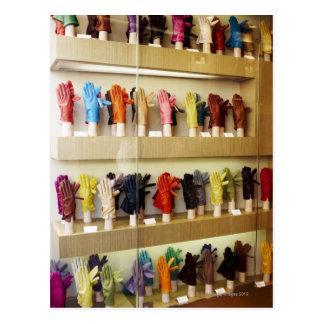 Shop of gloves postcard