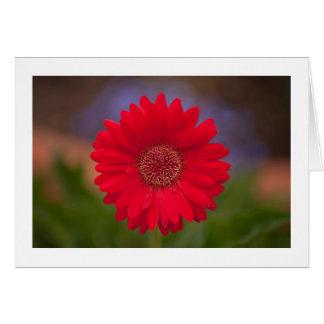 Shopping Center Flower Greeting Card