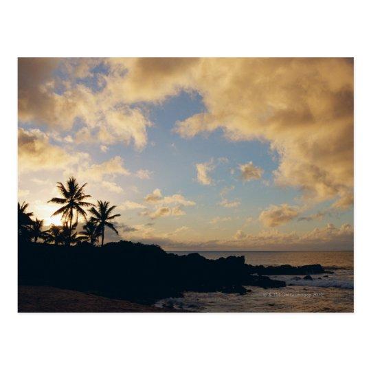 Shore 5 postcard