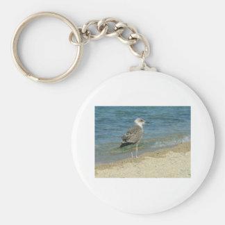 Shore bird keychains