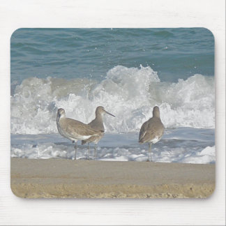 Shore Bird Trio Mousepad