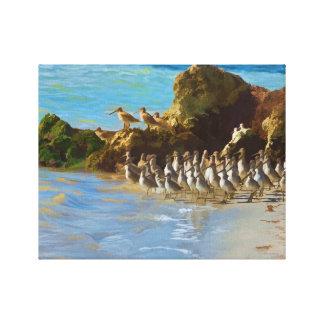 Shore Birds at the Ocean on a Canvas Print