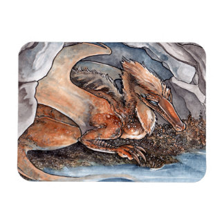 Shore Dragon Rectangle Magnet