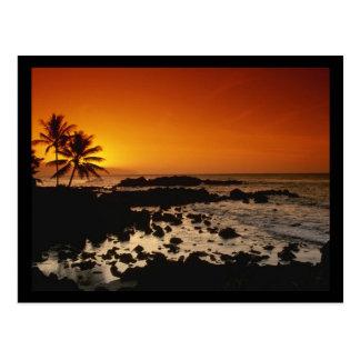 Shore Oahu Hawaii Post Card