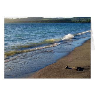 Shore of Lake Taupo, New Zealand. Card