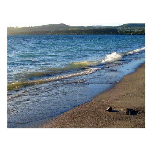 Shore of Lake Taupo, New Zealand. Postcards