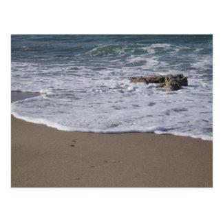Shore Postcard