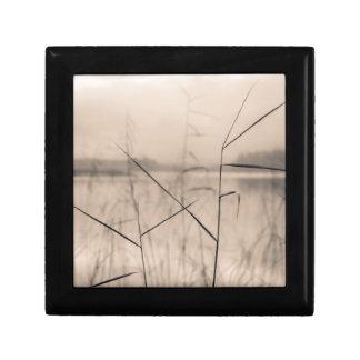 Shore reeds jewelry box