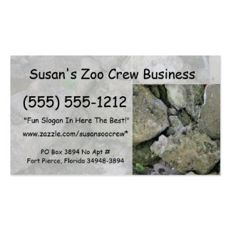 Shore rocks, jagged, with small green shoot business card