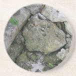 Shore rocks, jagged, with small green shoot drink coasters