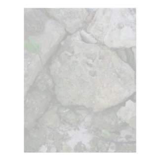 Shore rocks, jagged, with small green shoot letterhead