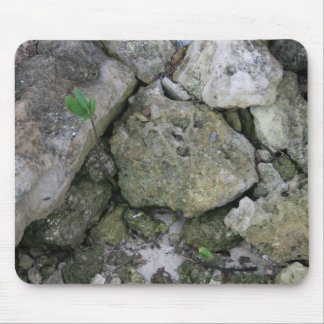 Shore rocks, jagged, with small green shoot mouse pad