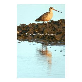 Shorebird Birds Wildlife Animals Avocets Godwits Stationery