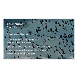 Shorebird flock, Kachemak Bay Shorebird Festival, Business Card