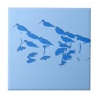 Shorebirds Birds Wildlife Beach Animals Tile