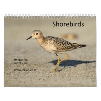 Shorebirds Calendar