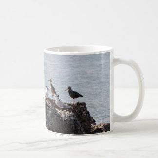 Shorebirds mug