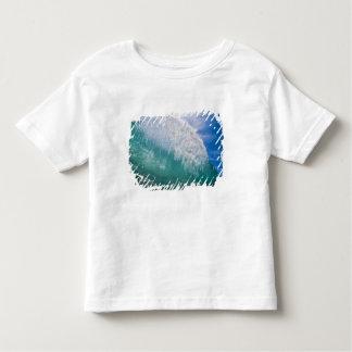 Shorebreak wave 2 toddler t-shirt