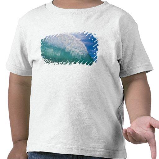 Shorebreak wave 2 tshirt
