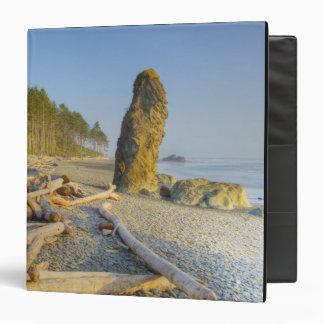 Shoreline and Seastacks, Ruby Beach, Olympic Binder