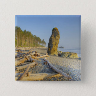 Shoreline and Seastacks, Ruby Beach, Olympic Button