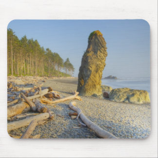 Shoreline and Seastacks, Ruby Beach, Olympic Mouse Pad