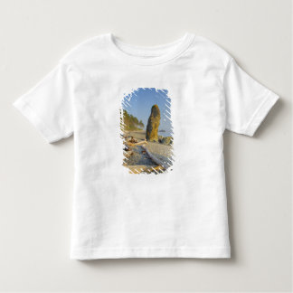 Shoreline and Seastacks, Ruby Beach, Olympic Toddler T-shirt