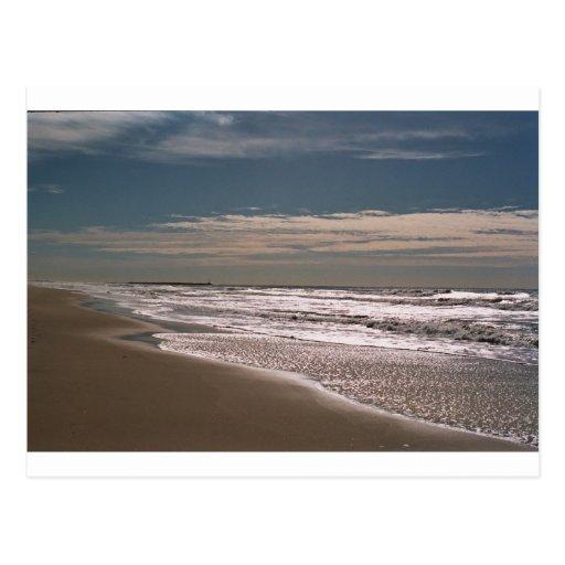 Shoreline Postcard