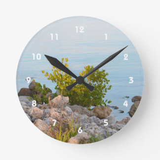 shoreline with rocks and plants of river round clock