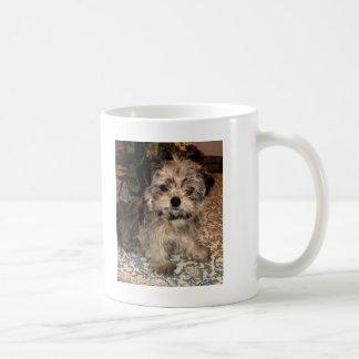 Shorkie Puppy Classic White Coffee Mug