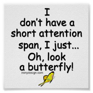 Short Attention Span Butterfly Poster