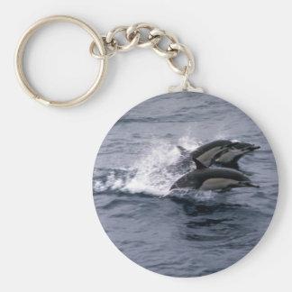 Short-beaked common dolphin keychain