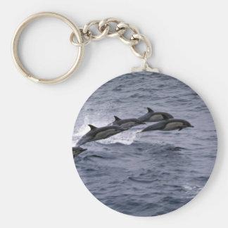 Short-beaked common dolphin key chain