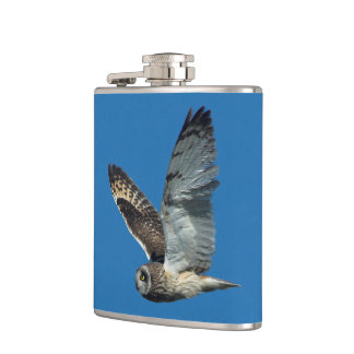 Short-eared Owl ( Asio flammeus) in flight Hip Flask