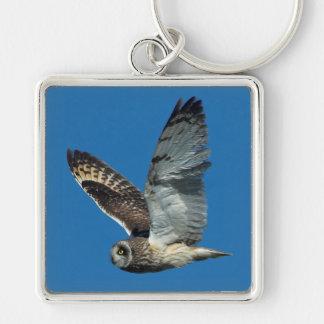 Short-eared Owl ( Asio flammeus) in flight Keychain