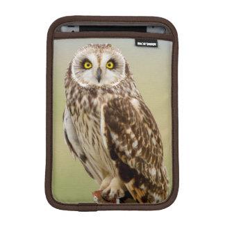 Short Eared Owl At Ninepipe Wma Near Ronan iPad Mini Sleeve