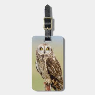 Short Eared Owl At Ninepipe Wma Near Ronan Luggage Tag