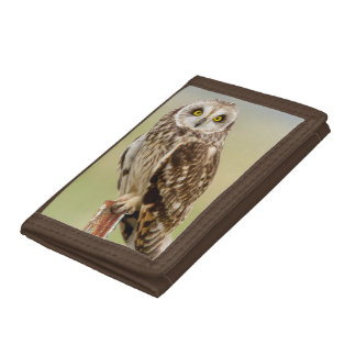 Short Eared Owl At Ninepipe Wma Near Ronan Tri-fold Wallets