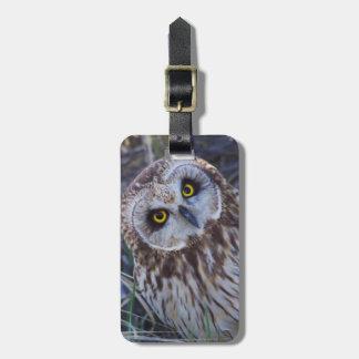 Short-eared Owl Bag Tag