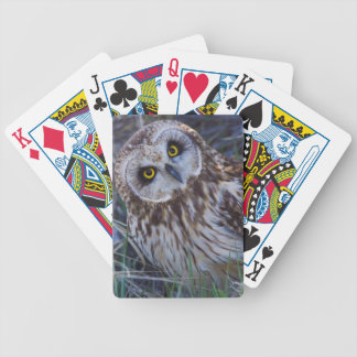 Short-eared Owl Bicycle Playing Cards