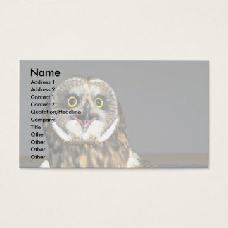 Short-eared Owl Business Card