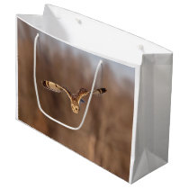 Short-eared owl diving towards the ground large gift bag